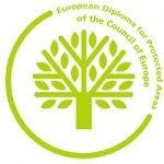 european diploma_250px